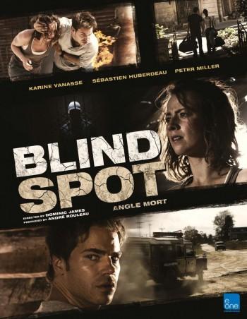 Blind Spot (Film)