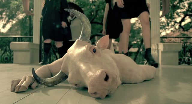 American Horror Story Clip 5