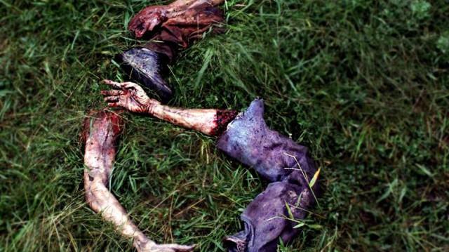 """AMC verlängert """"The Walking Dead"""" für die sechste Staffel"""