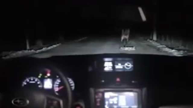OMG – Wieso ihr niemals Nachts auf einer abgelegenen Straße anhalten solltet!