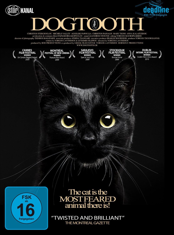 dogtooth film 2013 scarymoviesde
