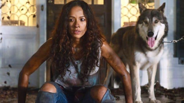 """Offizieller Trailer zum Werwolf-Thriller """"Lycan"""""""