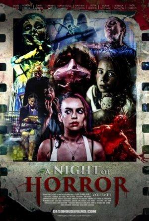A Night of Horror (Film)