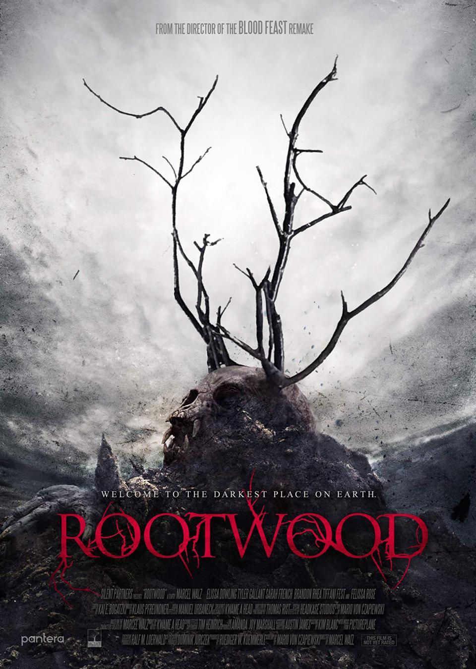 """Neuer Trailer zu """"Rootwood"""" führt uns an den gruseligsten Ort der Welt"""