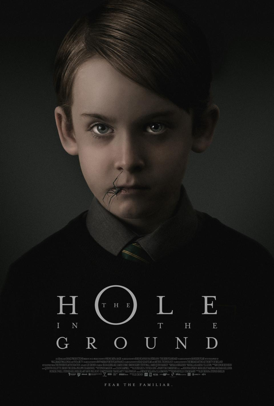 "Filmposter zum irischen Horrorfilm ""The Hole in the Ground"""